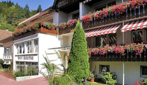 Wellness-Hotel Hubertus Bad Peterstal-Griesbach